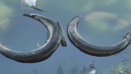 Pair of old tires submerged in the water of a polluted river