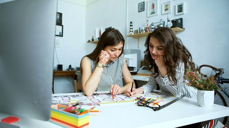 Pair of young female architects working together