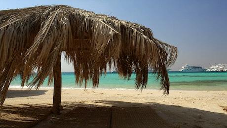 Palm umbrellas on the beach