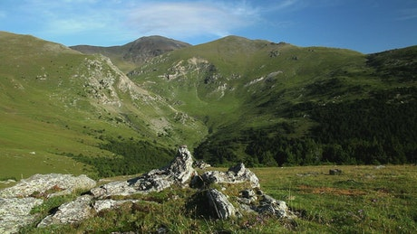 Panoramic view of a valley in summer