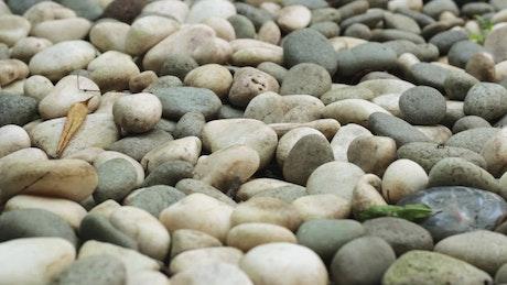 Path of pebbles