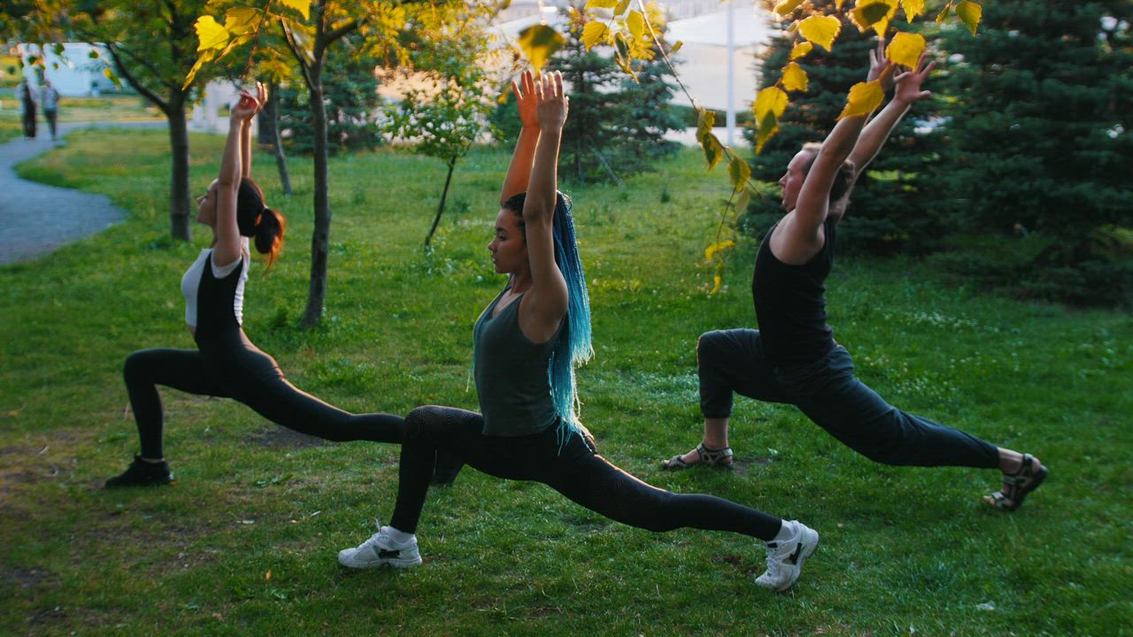 People doing yoga in the park - Free Stock Video - Mixkit