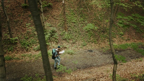 People exploring the woods for camping
