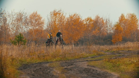 People galloping on horses in a forest