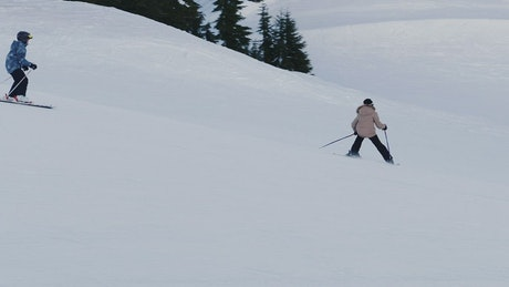 People skiing on the snow