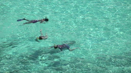 People snorkeling on crystal clear waters