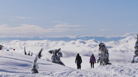 People walking on the snowy summit