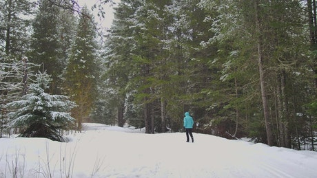 Person walking in a snowy pine forest