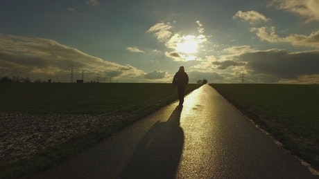 Person walking on a path through agriculture fields