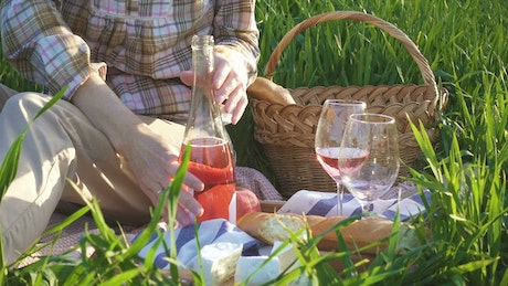 Picnic day with wine and cheese