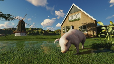 Pig drinking water from a lake on a farm in 3D