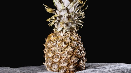 Pineapple rotating on a black background