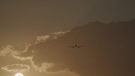 Plane landing on a warm evening