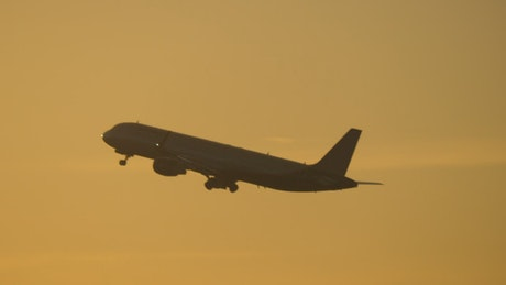 Plane taking off in the evening