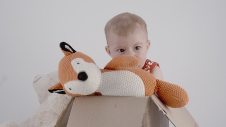 Portrait of a baby with teddies