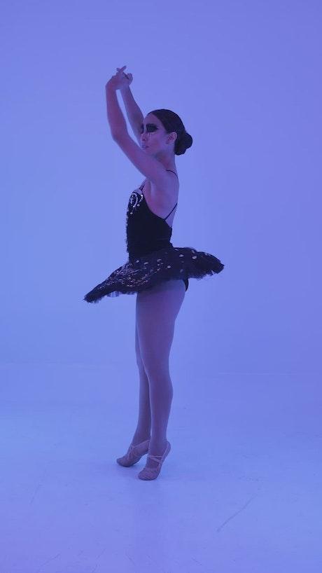 Portrait of a ballerina in ballet pose