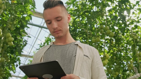 Portrait of a man using a tablet at a greenhouse