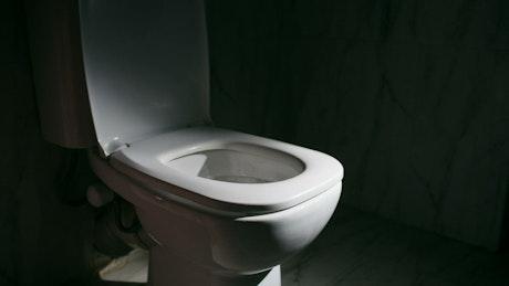Pouring soda down the toilet