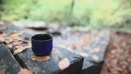 Pouring tea at the cabin in the woods
