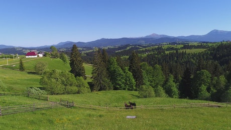 Prairie view of a ranch with horses