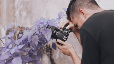 Pro photographer taking photos of purple flowers