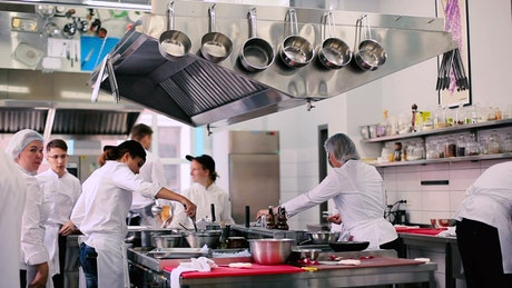 Professional chefs work in restaurant kitchen