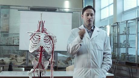Professor explaining human anatomy