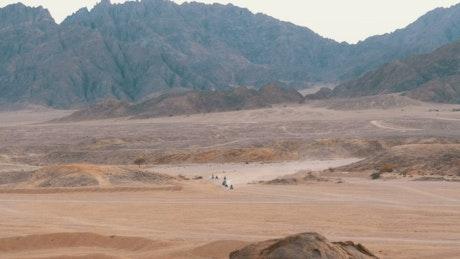 Quad bikes gang crossing the desert