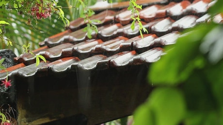 Raindrops on a clay rooftop
