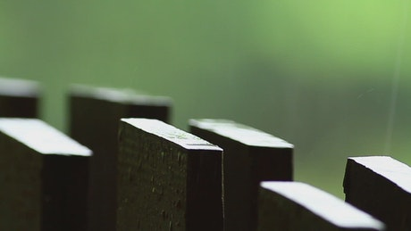 Rainfall on a wooden fence