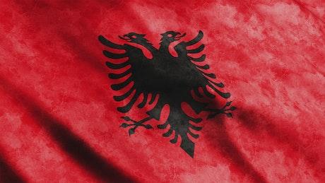 Red Albania flag waving