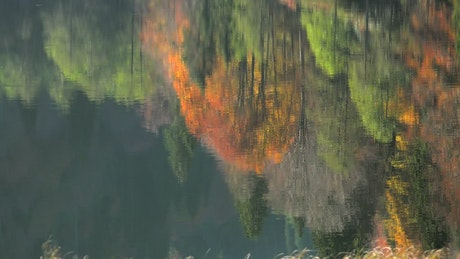 Reflection of autumn colors in the lake and forest