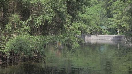River boat tour in Hanoi