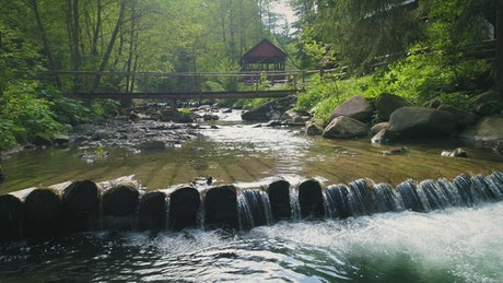 River in a cabin area in the woods