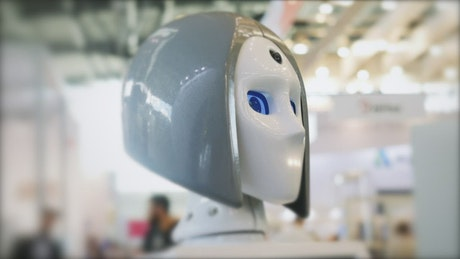 Robot with moving eyes