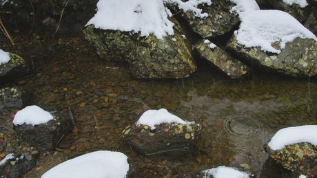 Rocks in a river in a snowy forest