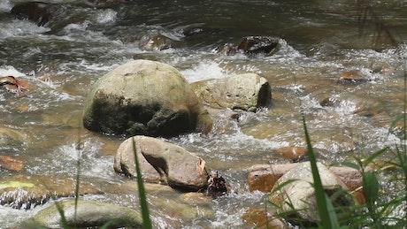 Rocky stream in the hills