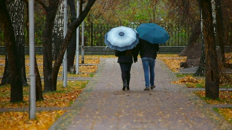 Romantic couple walking in the park during the fall