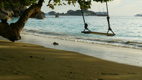 Rope swing on the beach at sunset