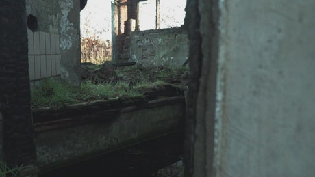 Ruined room of an abandoned house