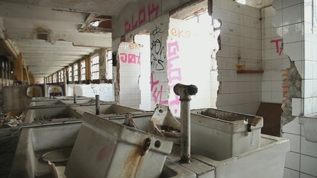 Ruins of the bathroom of an old building
