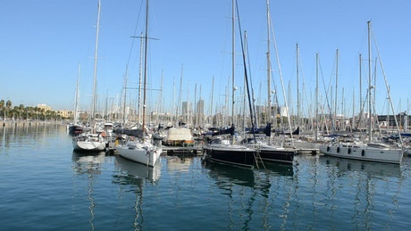 Sailboats anchored in a harbor