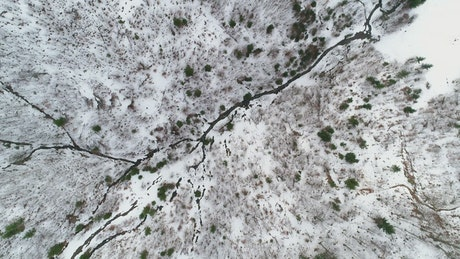 Satellite view of a snowy forest