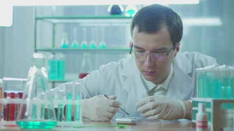 Scientist working with white powder in the lab