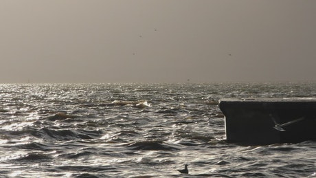 Sea waves hitting a dock