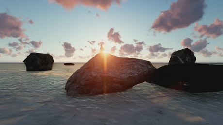 Seagull perched on a rock on a beach 3D at sunset