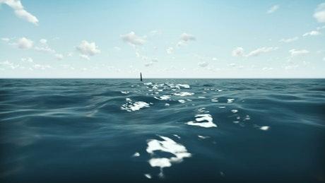 Shark in the ocean, 3D animation