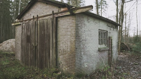 Shed in a temperate forest