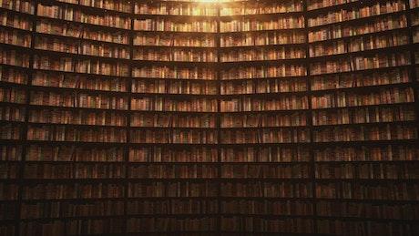 Shelves full of books, 3D Animation