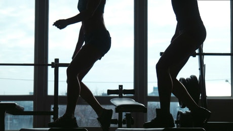 Silhouette of women doing exercises